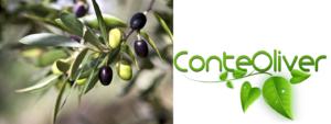 Oggi parliamo di OliViva, la nuova linea all'olio di oliva