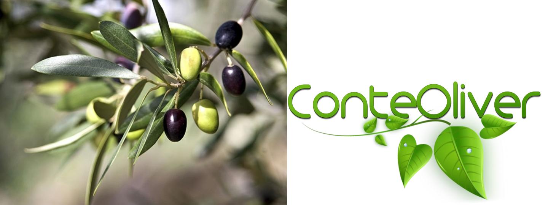 You are currently viewing Oggi parliamo di OliViva, la nuova linea all'olio di oliva